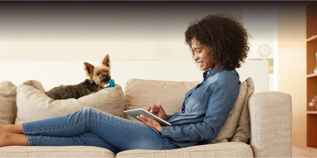 Help Your Pet Adjust to Your Return to Work